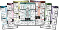 Co-Ed Workout Fitness Chart Kit