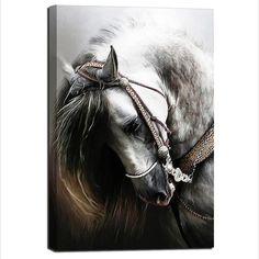 'Obedient' Stunning Horse Canvas Print