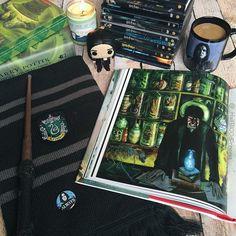 harry potter Harry Potter Decor, Harry Potter Fan Art, Harry Potter Movies, Draco, Harry Potter Aesthetic, Slytherin Aesthetic, Hogwarts Mystery, Harry Potter Collection, Harry Potter Wallpaper