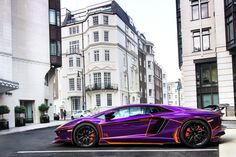 Purple & Orange. | It certainly stands out. | Alex Penfold | Flickr