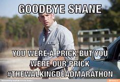 Goodbye Shane