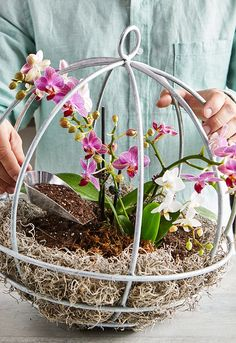 This Orchid Planter Project Will Be a Conversation Starter - - This project can be done in an afternoon and makes it easy to show off your favorite orchid plants. Orchids In Water, Indoor Orchids, Orchids Garden, Indoor Plants, Flowers Garden, Hanging Orchid, Hanging Plants, House Plants Decor, Plant Decor