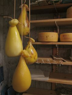 New England Cheesemaking Supply- BEST cheese recipe page I… Making Cheese At Home, How To Make Cheese, Cheese Cave, Wine Cheese, Charcuterie, Antipasto, No Dairy Recipes, Cooking Recipes, Yogurt