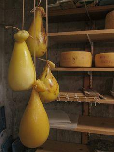 Making Caciocavallo Cheese