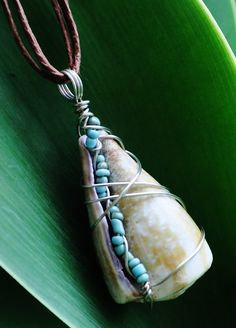 whole sea shell pendant, wire wrapped with turquoise seed beads