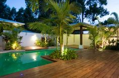 Tropical outdoor pool with a simple wooden deck featuring palm trees