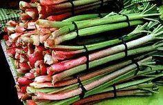 Rhubarb tips; Growing Rhubarb, Asparagus, Vegetables, Garden, Tips, Red, Studs, Garten, Lawn And Garden