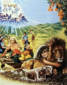 Isaiah 11:6-9 ... the leopard will lie down...a little boy will lead them...the lion will eat straw like the bull...the nursing child will play and a weaned child...Because the earth will certainly be filled with the knowledge of Jehovah ........