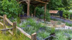 RHS Hampton Court Flower Show 2016 - Practicality Brown Hampton Court Flower Show, Rhs Hampton Court, Lavender Garden, Hedges, Outdoor Furniture, Outdoor Decor, Garden Bridge, Garden Design, Pergola