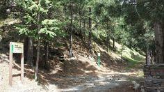 Foto de Área recreativa Río Laroles