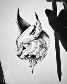 Tattoo Darya Morgan - tattoo's photo In the style Whip Shading, Ca Tattoo Sketches, Tattoo Drawings, Drawing Sketches, Pencil Art Drawings, Cat Drawing, Animal Sketches, Animal Drawings, Cat Tattoo, Animal Tattoos