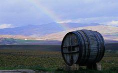 Le vie del vino in Sicilia / Wine routes in Sicily:  http://urlin.it/4e500