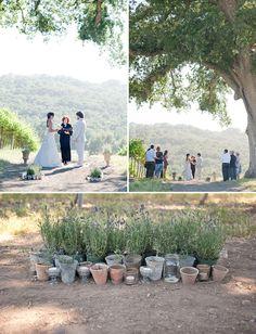 A California Vineyard Wedding: Jessica + Ben