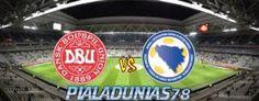 Prediksi Skor Bola Denmark vs Bosnia-Herzegovina 3 Juni 2016