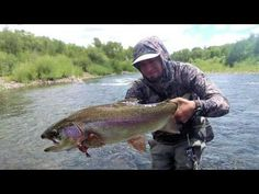 All you need to know about fly fishing tips trout. Trout Fishing Tips, Bass Fishing Tips, Fishing Videos, Salmon Fishing, Best Fishing, Fly Fishing Nymphs, Bass Tournaments, Monster Fishing, Fishing Photos