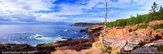 Acadia National Park- Cliffside hikes and falcons, lighthouses and the sea! What could be better?