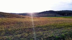 Aspettando la SuperLuna baciati dall'ultimo raggio di sole... #livorno #toscana #tuscany #tuscanypeople #guasticce #sole #sun #terra #earth #instalife #instamoment #instalike #volgolivorno #volgotoscana #volgoitalia #igerslivorno #igerstoscana #igersitalia #l4l #like4like #likeforlike