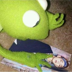 This is a Community where everyone can express their love for the Kpop group BTS Sapo Kermit, Kpop Anime, Sapo Meme, Frog Meme, E Dawn, Drama Memes, Bts Memes Hilarious, Frog Wallpaper, Kermit The Frog
