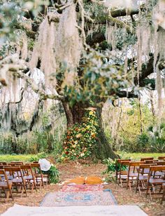 Animals, Flowers, and Boho Style Brought the Festival Vibes to this Savannah Wedding - Green Wedding Shoes wedding venues Animals, Flowers, and Boho Style Brought the Festival Vibes to this Savannah Wedding - Green Wedding Shoes Wedding Tips, Boho Wedding, Dream Wedding, Perfect Wedding, Wedding Shot, Wedding Vintage, Woodland Wedding, Wedding Card, Spring Wedding