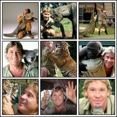 He was my role modle and still is, its the crocodile hunter fhe best man ever