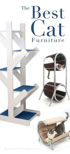 The Best Cat Furniture #CatFurniture #moderncattoys #catbehaviorplays