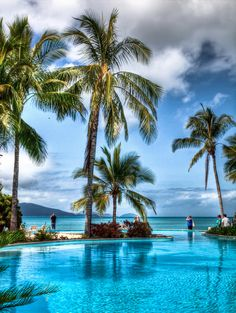 Hamilton Island, Queensland, Australia ... part of the Great Barrier Reef