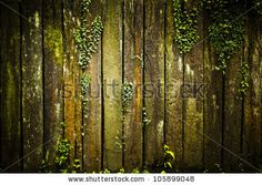 Woodworking School Old grunge Wood Texture with leaves by gotvideo, via Shutterstock - Woodworking Planes, Woodworking School, Woodworking Projects Plans, Teds Woodworking, Types Of Furniture, Furniture Making, Wood Background, Wood Texture, Carpentry
