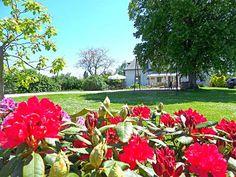Les rhododendrons annoncent le printemps dans le parc de cette maison d'hotes.