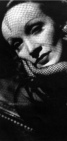 Classic Beauties : Marlene Dietrich