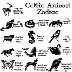 wiccateachings:  The Celtic Animal Zodiac.The Celts honored the rhythms of Nature, and observed different flavors of their environment according to the season. Like our Native American kin, the full moon in each month held a special personality. They hada tree zodiac a Moon Zodiac and an Animal Zodiac. The Animal Zodiac is based on the animal that is most prominent within the season and the month of the persons birth. Below is a brief description of personality traits from the…