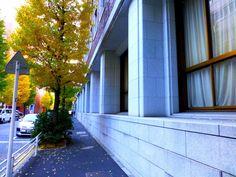 野村證券日本橋本社ビル(日本橋野村ビルディング)。 .     1930年(昭和2年)に完成した歴史的な、この建築。 .     地域の大型再開発の一環として、 リニューアルする、という計画が、 先日発表されていました。 .     新聞記事によると。 .   「再開発は敷地内にオフィスを中心とする超高層ビルを建設する構想。  戦前に建てられた野村証券の本社ビルは保存し、  美術館やレストランとして活用する案が有力」…。 .   「大通り沿いを中心にレトロな外観をなるべくそのまま残して改装するが、...