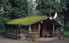 log village - Pesquisa Google