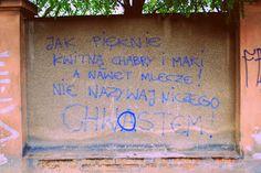 Zwierzyniecka. mądrości na murach.