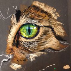Cath Ingles explains all whilst tackling tough cat eyes now available ArtTutor as part of our Pastels Animal Module