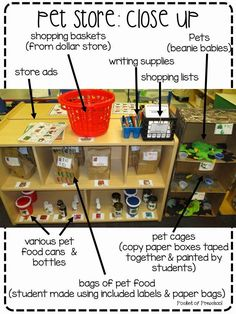 Pets!  Our theme this month is PETS!  A fun theme for students (and teachers).   The pretend center changed into a Pet Store!  Here is ...