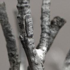 Handgjutna silvergrenar/ Hand casted silver branches