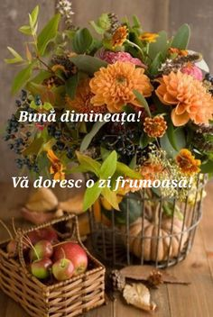 Italian Memes, Animals And Pets, Good Morning, Plants, Facebook, Pictures, Fotografia, Italian Greetings, Seasons Of The Year