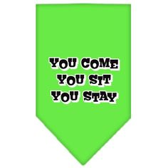 You Come, You Sit, You Stay Screen Print Bandana Lime Green Large