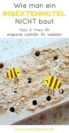 Ein Insektenhotel bauen? Das können wir doch auch! Und deshalb habe ich ein DIY-Projekt gestartet. Wie sich herausstellte haben wir leider so ziemlich ALLES falsch gemacht, was man beim Bau einer Wildbienen-Nisthilfe falsch machen kann! Damit es euch nicht genauso geht, kommen hier die wichtigsten Tipps!