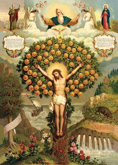 Jesus, the tree of life! Religious Images, Religious Icons, Religious Art, Image Jesus, Jesus Christ Images, Catholic Prayers, Catholic Art, Vintage Holy Cards, Jesus Pictures