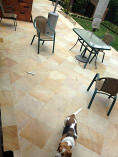 Himalayan Sandstone, Dusk, and lovely dogs enjoying the new paving!