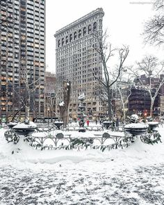Flatiron Building, Madison Square Park, NYC by Marco Degennaro Photography - The Best Photos and Videos of New York City including the Statue of Liberty, Brooklyn Bridge, Central Park, Empire State Building, Chrysler Building and other popular New York places and attractions.