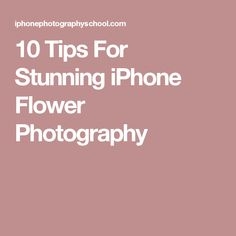10 Tips For Stunning iPhone Flower Photography
