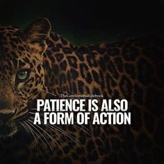 Positive Quotes : QUOTATION – Image : Quotes Of the day – Description Patience is also a form of action. Sharing is Power – Don't forget to share this quote ! https://hallofquotes.com/2018/04/11/positive-quotes-patience-is-also-a-form-of-action/