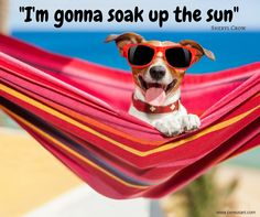 Beach Quote: -I'm gonna soak up the sun Sheryl Crow