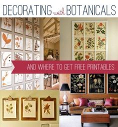 Decorating with Botanicals (and free printables!) - Persia Lou