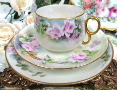BAVARIA GERMANY TEA CUP AND SAUCER TRIO TRAILING ROSES PATTERN TEACUP