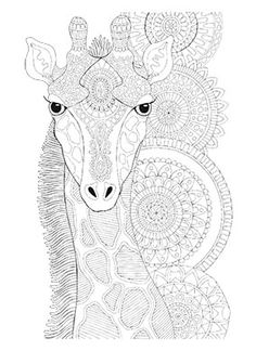 Trademark Global Hello Angel Animals 11 Canvas Art - 18 x 24 x 2 Dog Coloring Page, Coloring Book Pages, Coloring Sheets, Colouring, Thing 1, Repeating Patterns, Line Drawing, Art Reproductions, Black And Brown