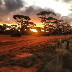 Kalgoorlie sunset