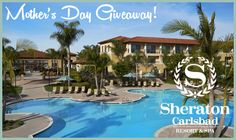 I have a Mother's Day Giveaway from the Sheraton Carlsbad Resort & Spa today and I am VERY EXCITED to give one of my mommy readers the chance to win! Tiny Oranges, Vacation Trips, Vacations, All I Ever Wanted, Me Time, Resort Spa, Giveaway, Things To Do, Scenery